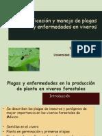 12.- Plagas y Enfermedades en Viveros Forestales