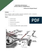 2. Anestezia regionala