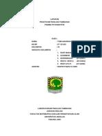 pigmen-fotosintetik