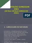 161387015 3b Psikopatologi Gangguan Jiwa
