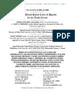 Constitutional Law Scholars Amicus