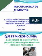 Microbiologia Basica de Alimentos 2012