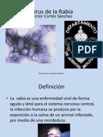 17-virusdelarabia-111205232643-phpapp01