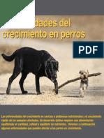 AV 35 Enfermedades Crecimiento Perros