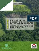 Areas Deforestadas Humedales