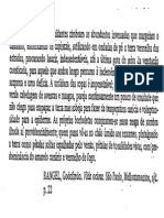 Texto Para Analise Morfologica