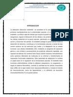 Introduccion4 Para Imprimir