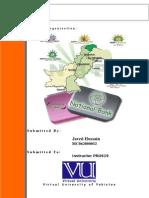 17111224 Internship Report on NBP for Finance Studen EMail Javedhussain56hotmailcom