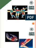 Clase de Anatomía Topográfica