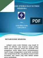metabolisme energi pada mikroba