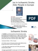2012-06-08 Best Practice in Ischaemic Stroke [RED] Team