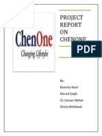 Chen one marketing plan