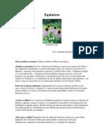 Echinacea Hoja de Datos-Jul 04