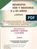 NEUROPSI ATENCIÒN Y MEMORIA 6 A 85 AÑOS. LÀMINAS.