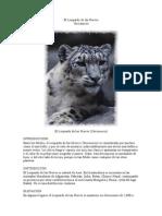 El Leopardo de las Nieves.docx