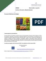 MAPA (Ministério da Agricultura, Pecuária e Abastecimento) nível médio e superior www.informaticadeconcursos.com.br