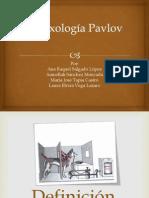 Reflexología Pavlov