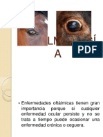 Oftalmologia y Dermatoogia