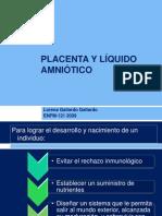 Clase Placenta