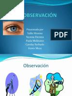 Observacion Aminta