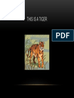 the tiger 2