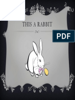 This a Rabbit 2