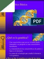 Genetica Basica Prepa