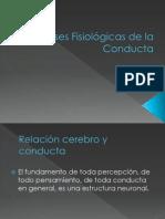 Bases Fisiológicas de la Conducta