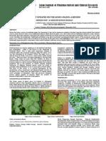 COLEUS FROSHKOLIIpdf.PDF