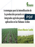 Tecnologias Para La Intensificacion Agropecuaria en Los Llanos de Colombia