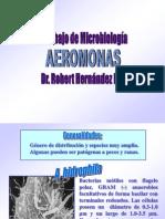 Aeromonas presentación