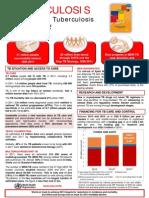 Factsheet Global TB
