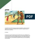 Agricultura Inca - Reforma Agraria -Ayacucho