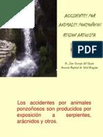 ACIDENTES POR ANIMALES PONZOÑOSOS