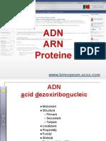 ADN ARN Proteine