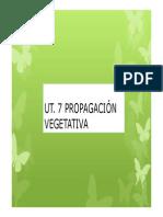 Ut 7 Govf [Modo de Compatibilidad]