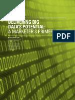 Delivering Big Data 's Potential