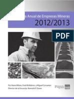 Mining Survey 2012 2013 Spanish