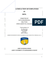 Dissertation Report on Job Satisfaction
