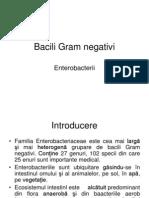 Bacili Gram Negativi