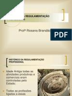 Historico da regulamentação.pdf