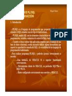 1_pl-sql_introduccio.pdf