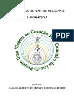 Carlos Jr_PLANTAS MEDICINAIS E AROMÁTICAS