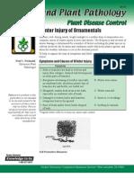 Botany and Plant Pathology
