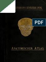 Atlas Anatomiedes Menschen