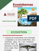 ecosistemas-1196246159868013-4