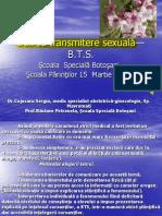 127200153-bolicutransmiteresexual-ppt