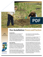 Tree Planting Details Process