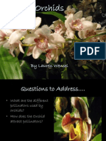 Wensel.orchids Evolution Project