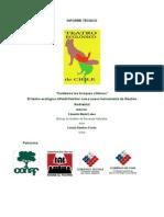 informe_tecnico_&_curriculum_obra